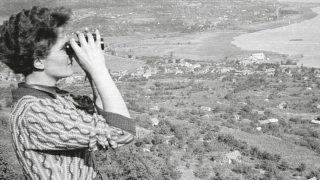 A magyar madártan 150 éve – Kezdetek: Őskortól a hőskorig