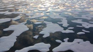 Sarkvidéki segélykiáltás – Lángol a jégvilág!