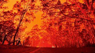 Bolygónkat beborító bozóttüzek – Fékezhetetlen fellángolás